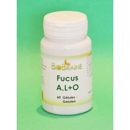 Fucus AL+O